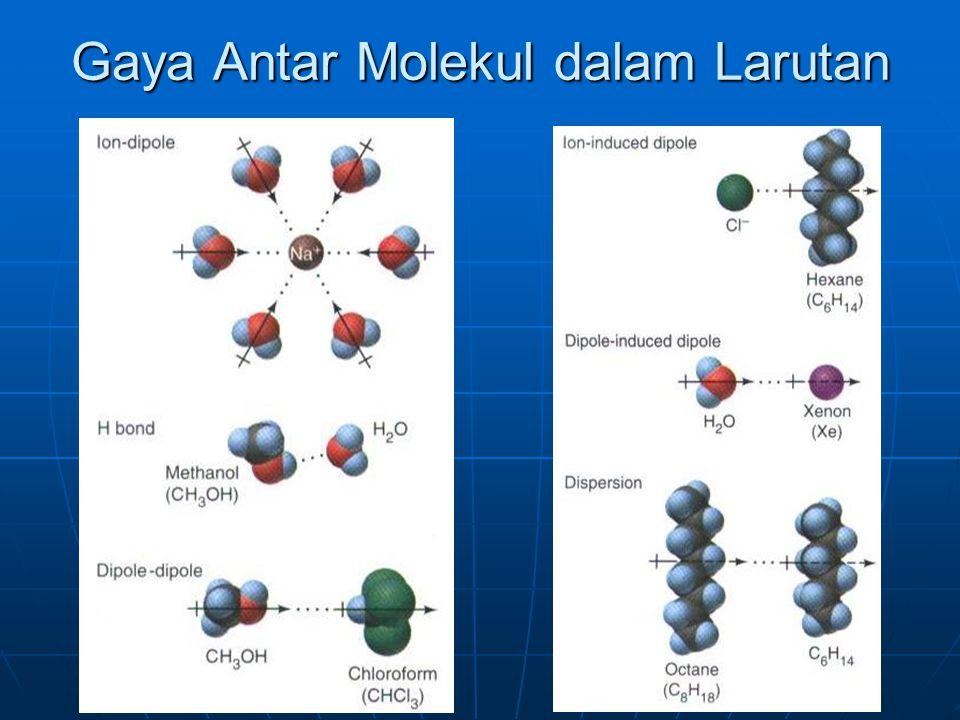 Gaya Antar Molekul dalam Larutan