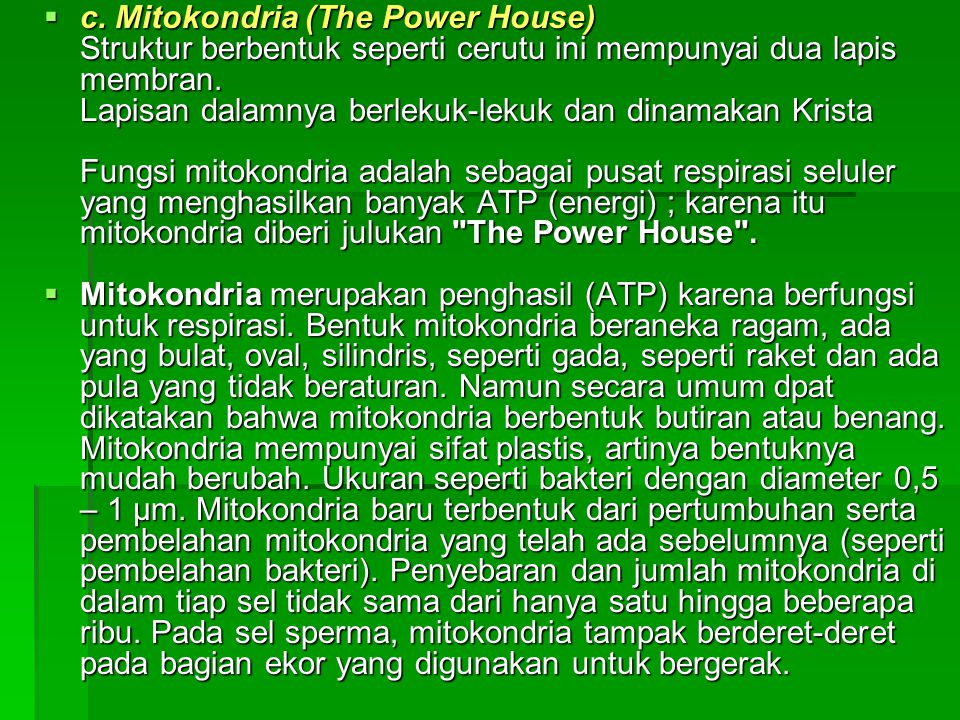 c. Mitokondria (The Power House) Struktur berbentuk seperti cerutu ini mempunyai dua lapis membran. Lapisan dalamnya berlekuk-lekuk dan dinamakan Krista Fungsi mitokondria adalah sebagai pusat respirasi seluler yang menghasilkan banyak ATP (energi) ; karena itu mitokondria diberi julukan The Power House .