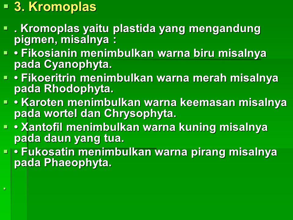 3. Kromoplas . Kromoplas yaitu plastida yang mengandung pigmen, misalnya : • Fikosianin menimbulkan warna biru misalnya pada Cyanophyta.