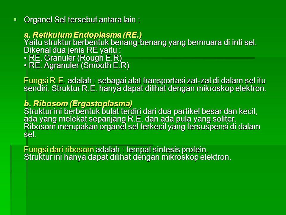 Organel Sel tersebut antara lain : a. Retikulum Endoplasma (RE