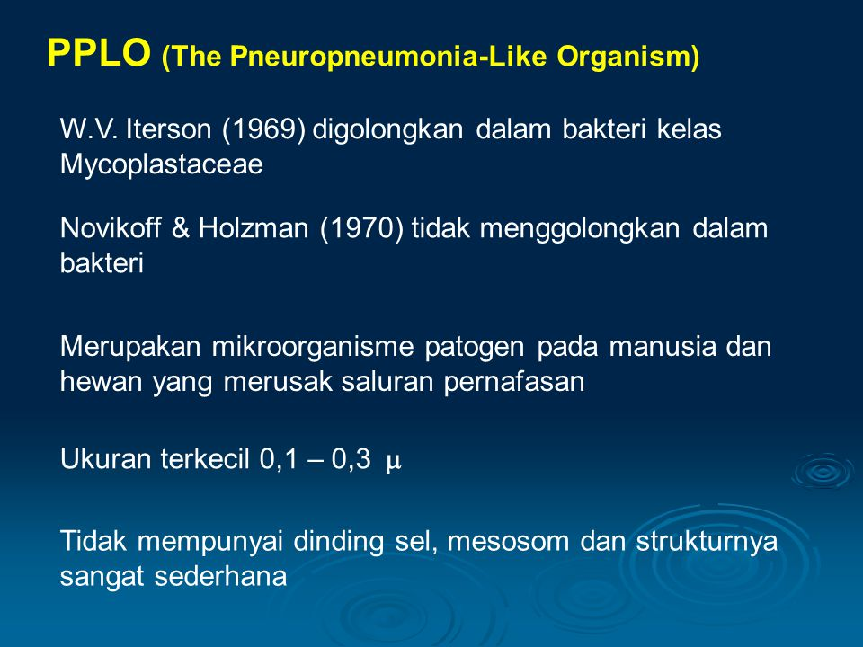 PPLO (The Pneuropneumonia-Like Organism)