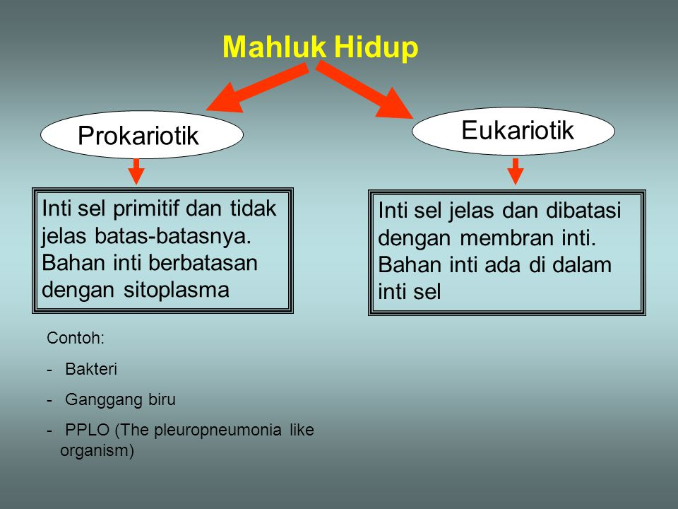 Mahluk Hidup Eukariotik Prokariotik