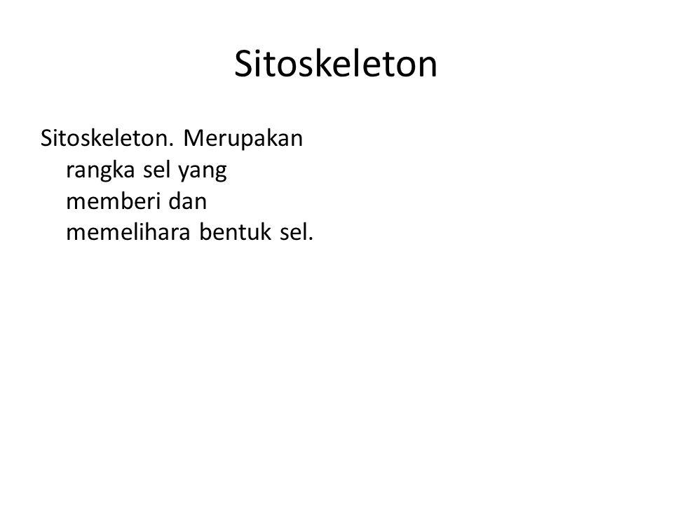 Sitoskeleton Sitoskeleton. Merupakan rangka sel yang memberi dan memelihara bentuk sel.