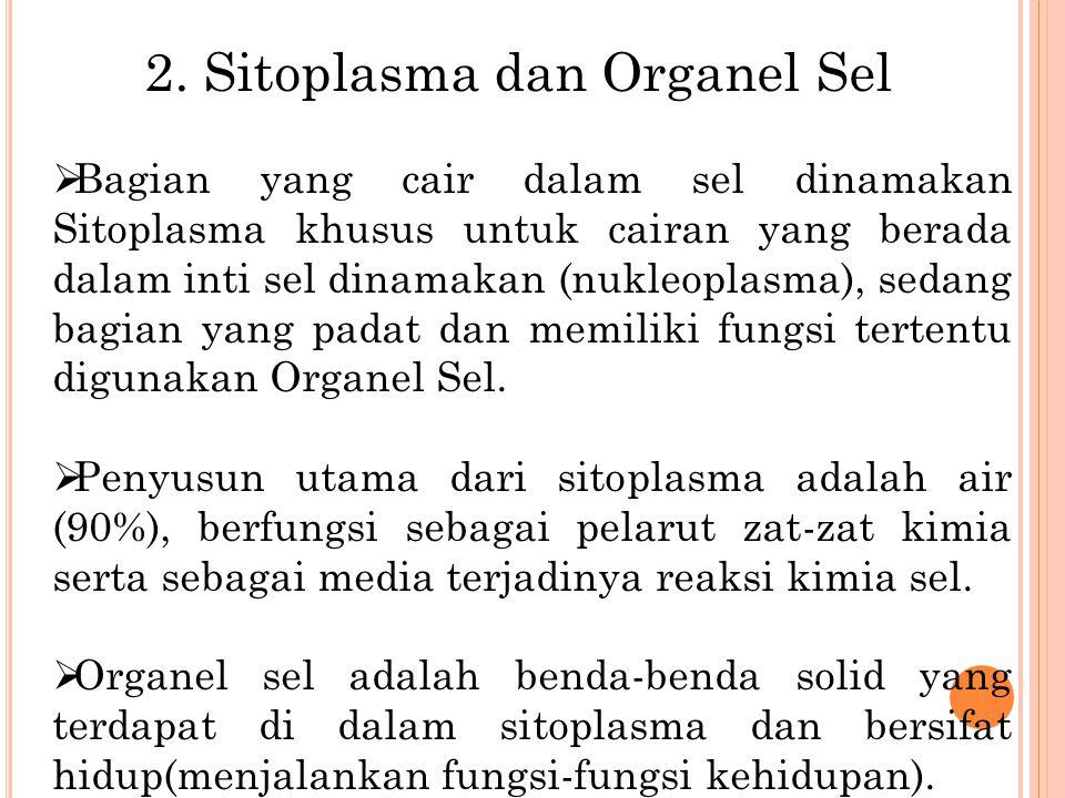 2. Sitoplasma dan Organel Sel