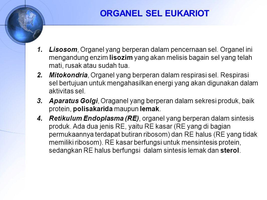 ORGANEL SEL EUKARIOT