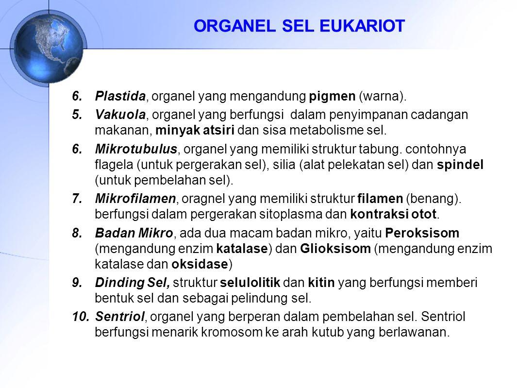 ORGANEL SEL EUKARIOT Plastida, organel yang mengandung pigmen (warna).