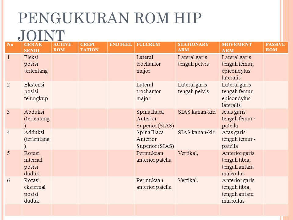 PENGUKURAN ROM HIP JOINT