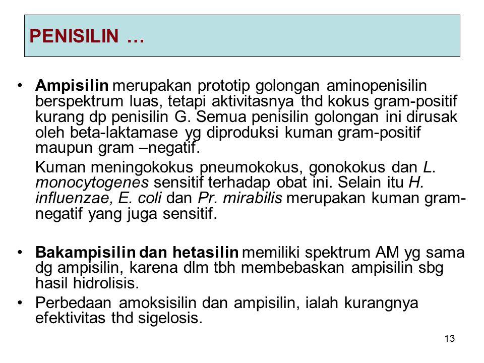 PENISILIN …