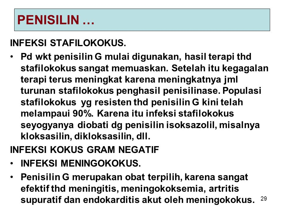 PENISILIN … INFEKSI STAFILOKOKUS.