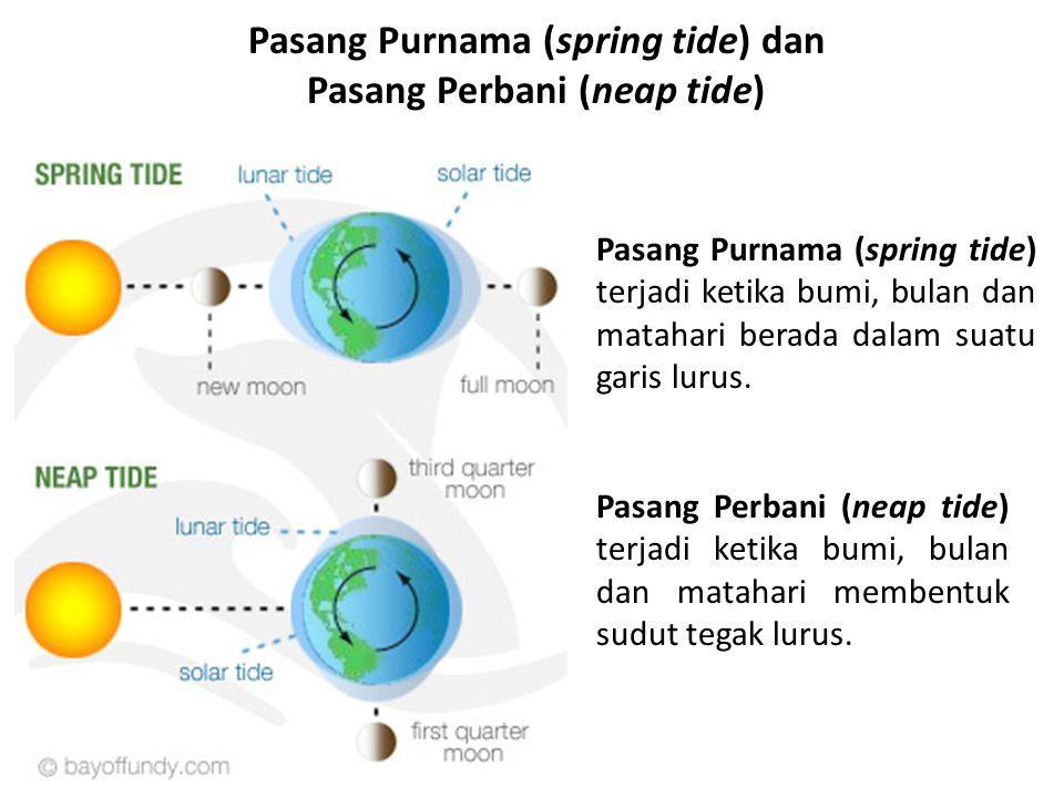 Pasang Purnama (spring tide) dan Pasang Perbani (neap tide)