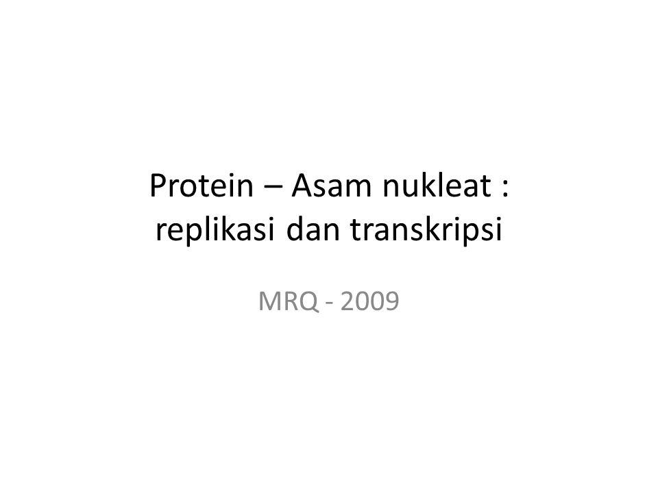 Protein – Asam nukleat : replikasi dan transkripsi