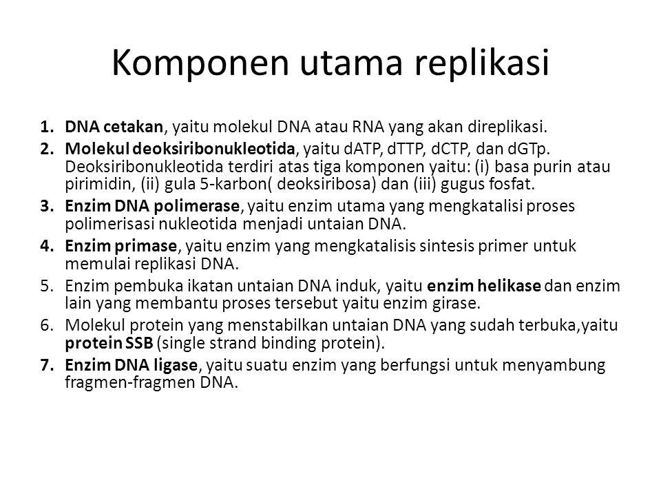 Komponen utama replikasi