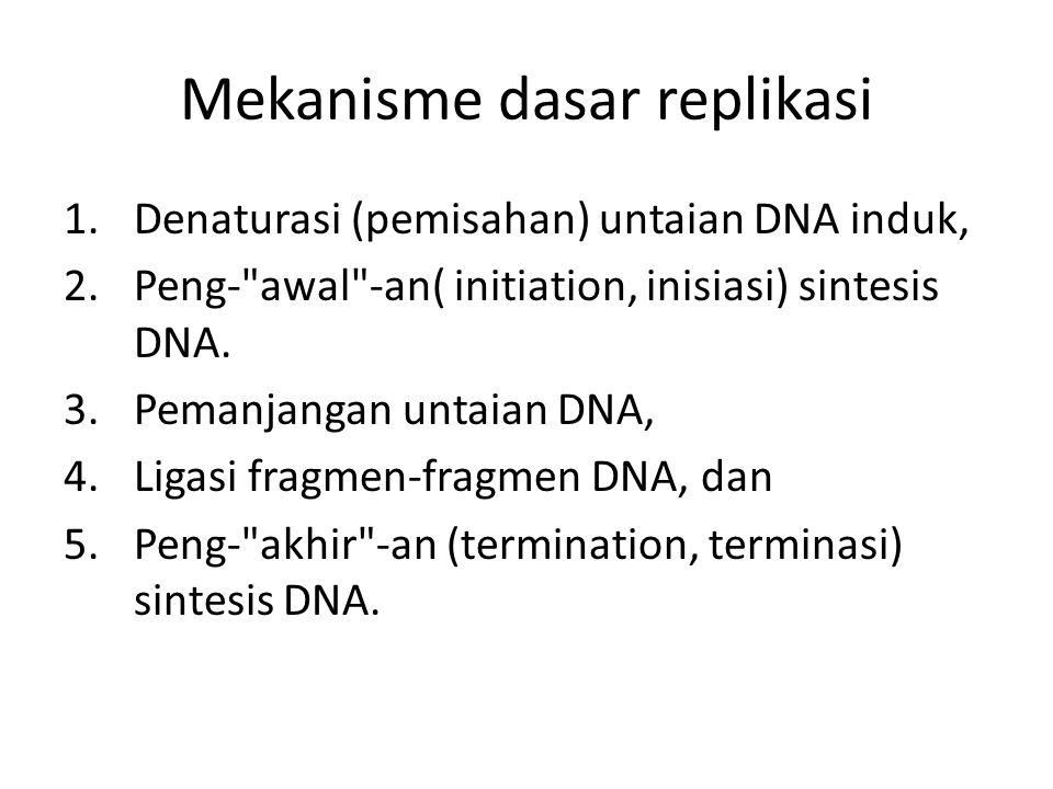 Mekanisme dasar replikasi
