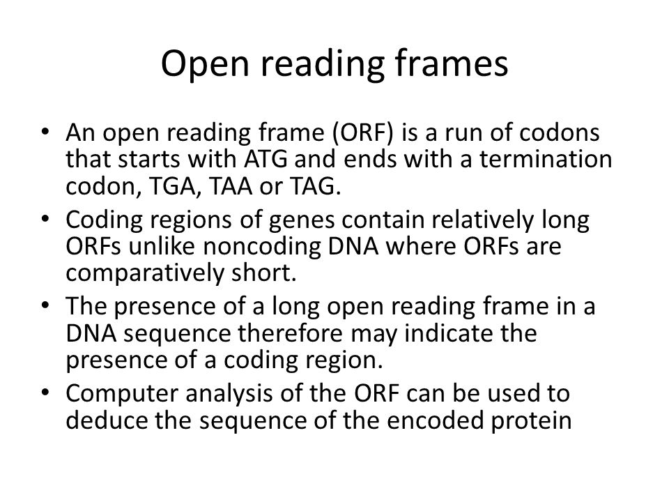 Open reading frames An open reading frame (ORF) is a run of codons that starts with ATG and ends with a termination codon, TGA, TAA or TAG.