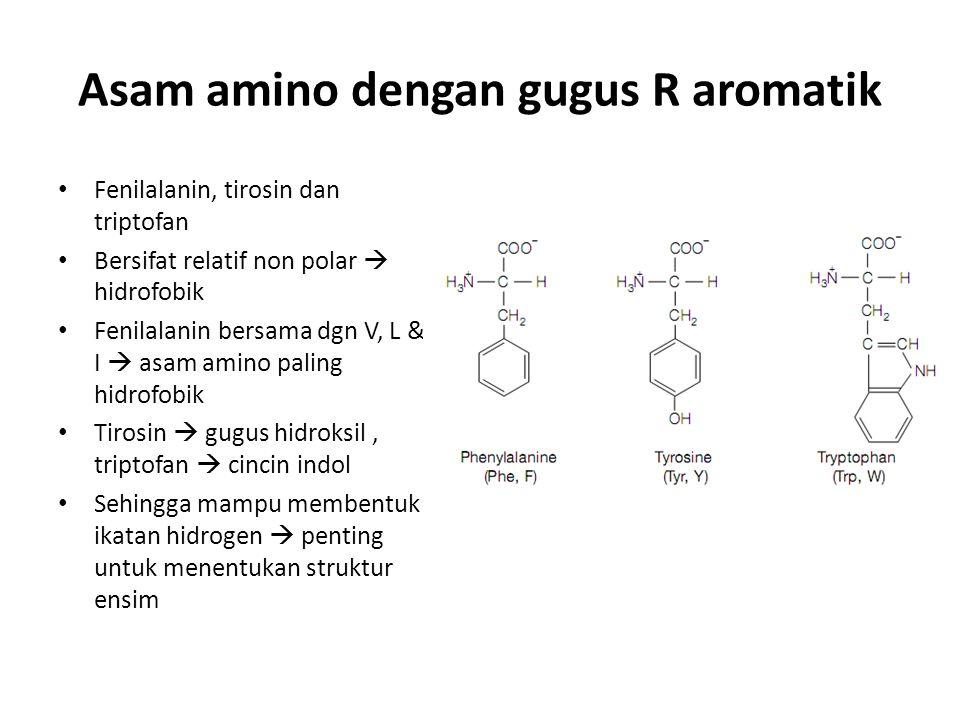 Asam amino dengan gugus R aromatik