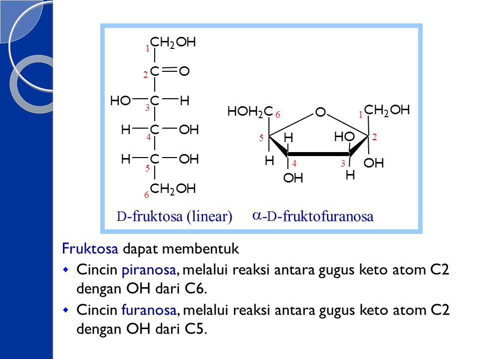 Fruktosa dapat membentuk