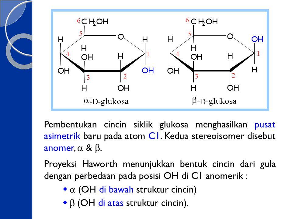 a (OH di bawah struktur cincin) b (OH di atas struktur cincin).