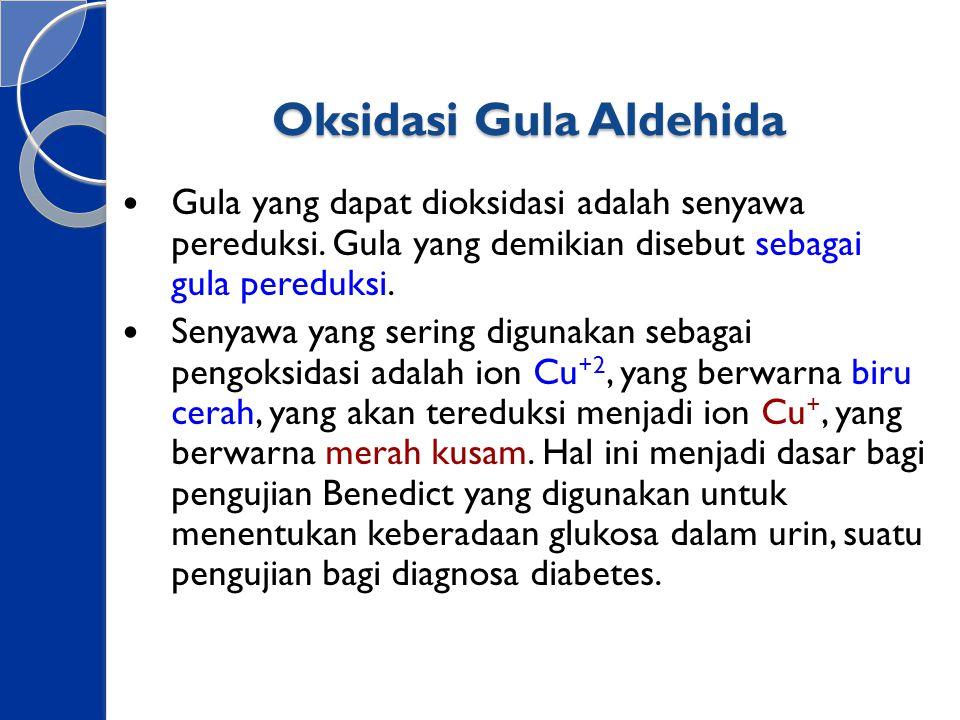 Oksidasi Gula Aldehida