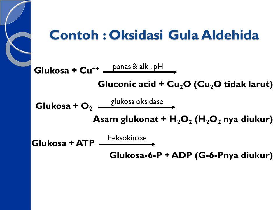 Contoh : Oksidasi Gula Aldehida