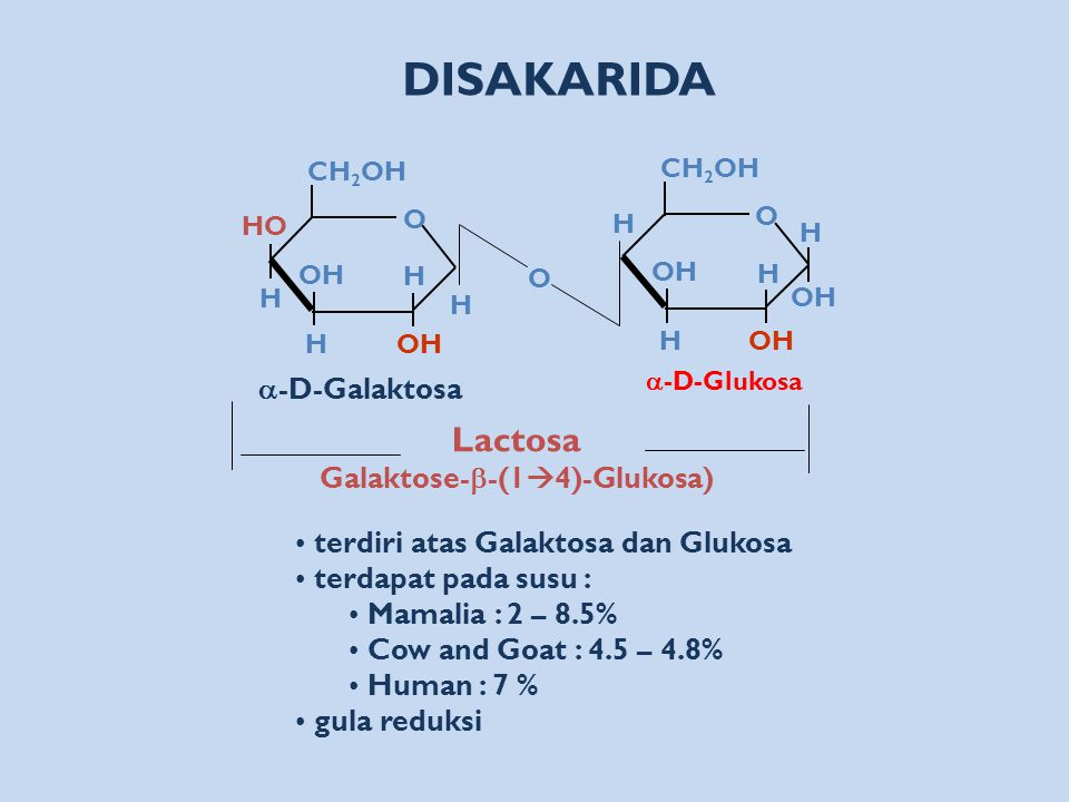 Galaktose-b-(14)-Glukosa)