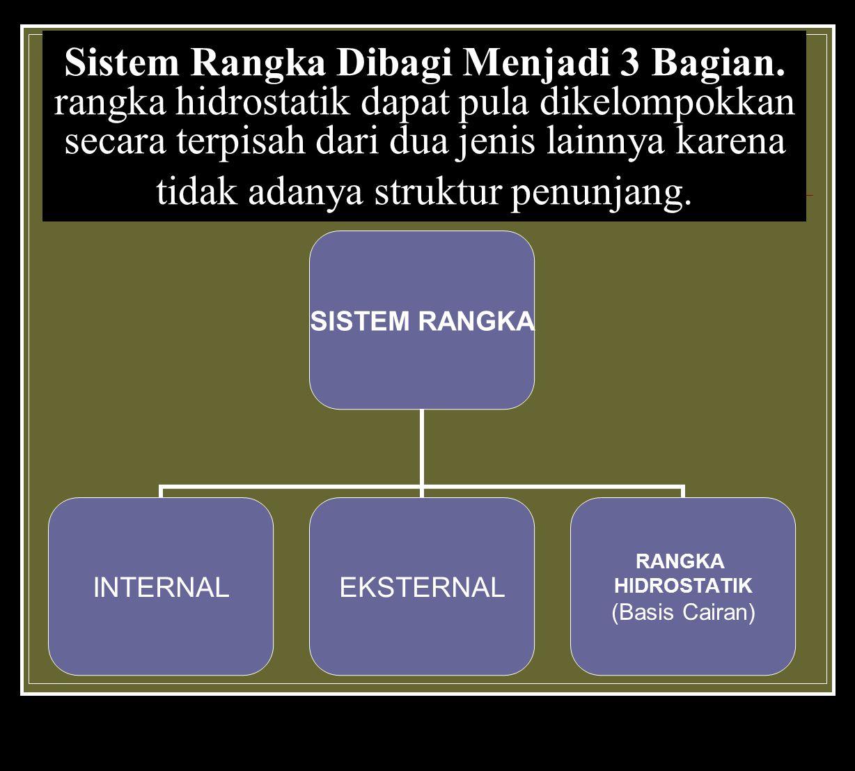 Sistem Rangka Dibagi Menjadi 3 Bagian