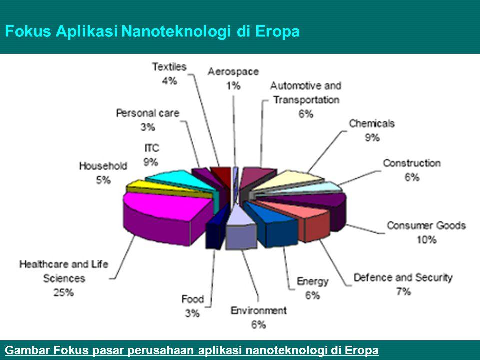 Fokus Aplikasi Nanoteknologi di Eropa
