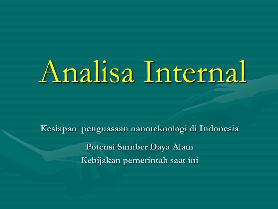 Analisa Internal Kesiapan penguasaan nanoteknologi di Indonesia Potensi Sumber Daya Alam Kebijakan pemerintah saat ini.
