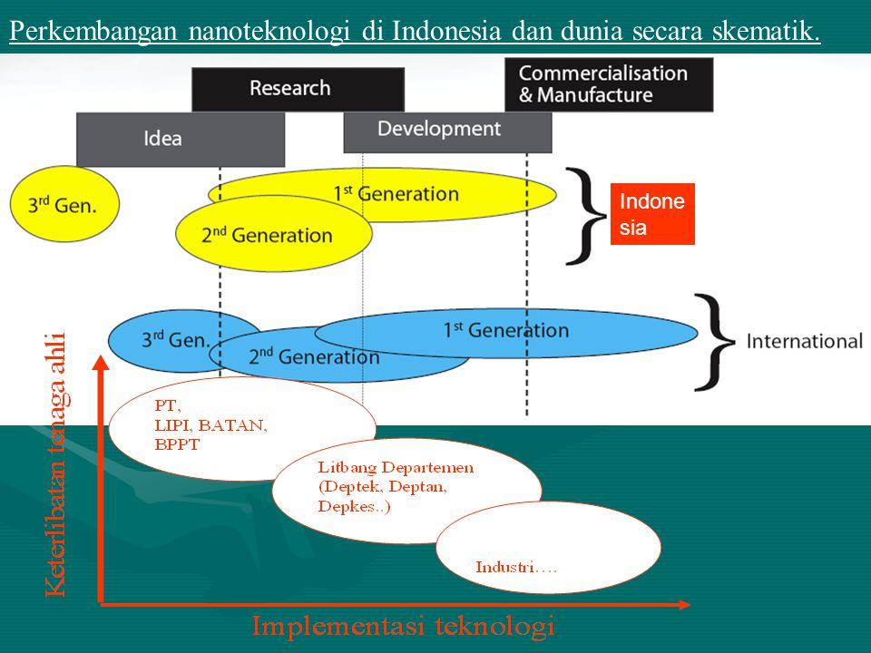 Perkembangan nanoteknologi di Indonesia dan dunia secara skematik.
