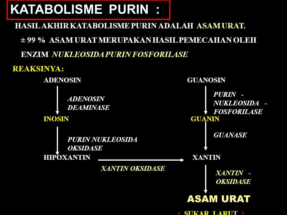 KATABOLISME PURIN : HASIL AKHIR KATABOLISME PURIN ADALAH ASAM URAT.