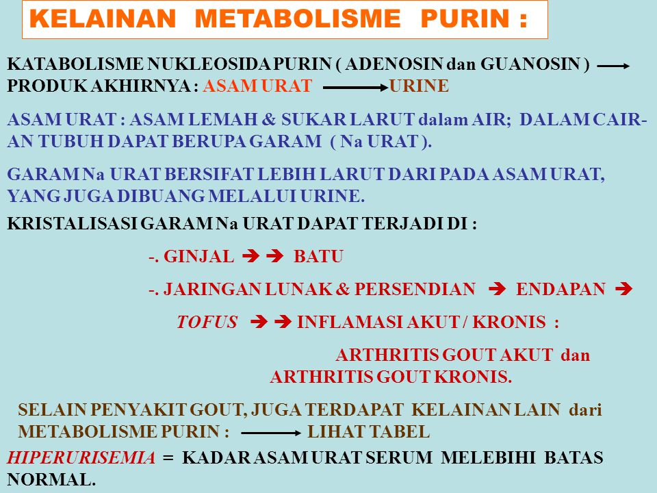 KELAINAN METABOLISME PURIN :