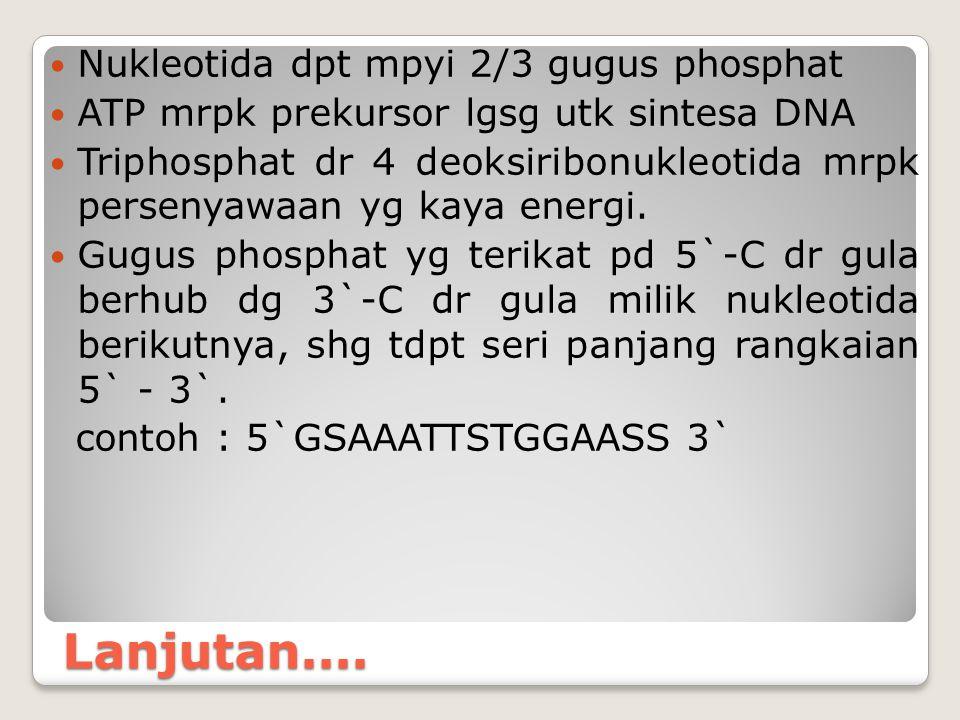 Lanjutan.... Nukleotida dpt mpyi 2/3 gugus phosphat