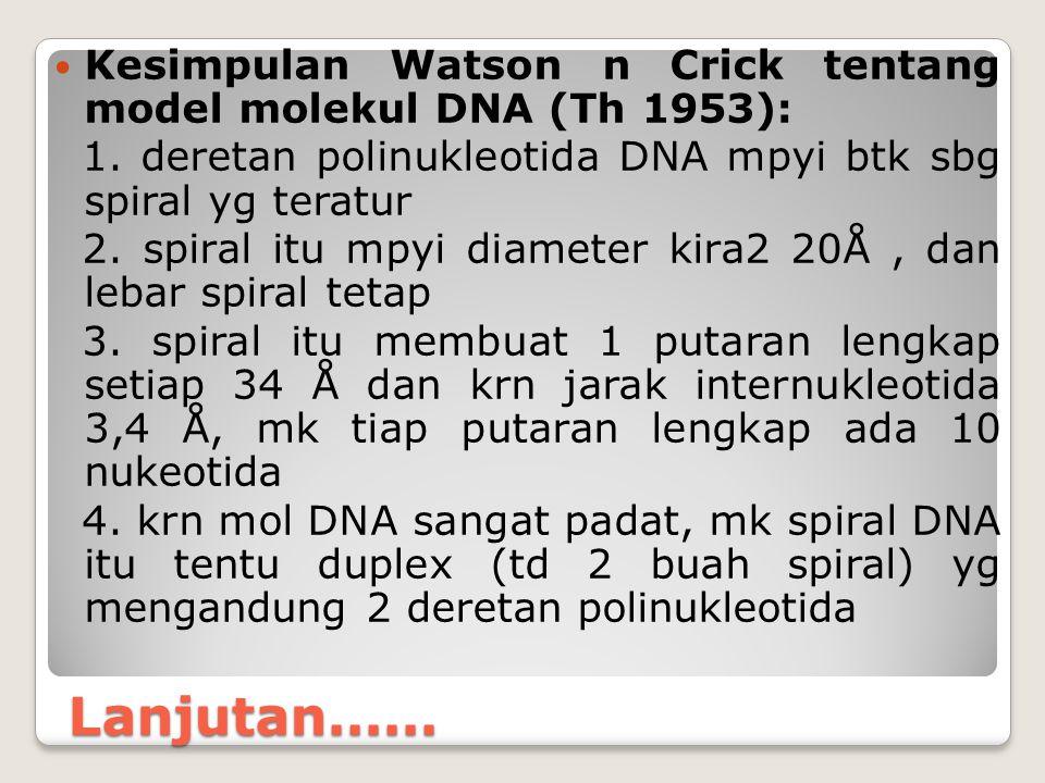Kesimpulan Watson n Crick tentang model molekul DNA (Th 1953):