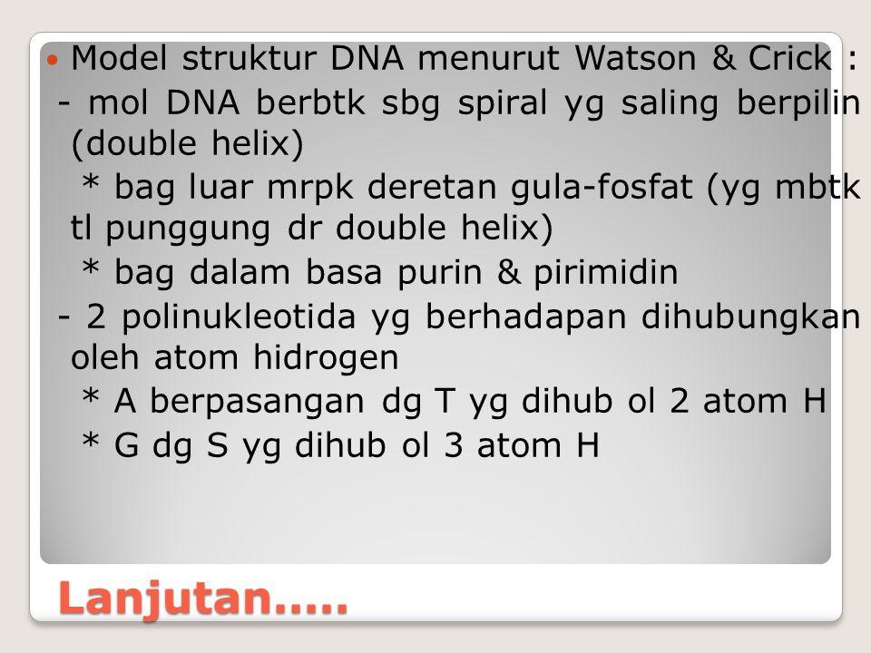 Lanjutan..... Model struktur DNA menurut Watson & Crick :