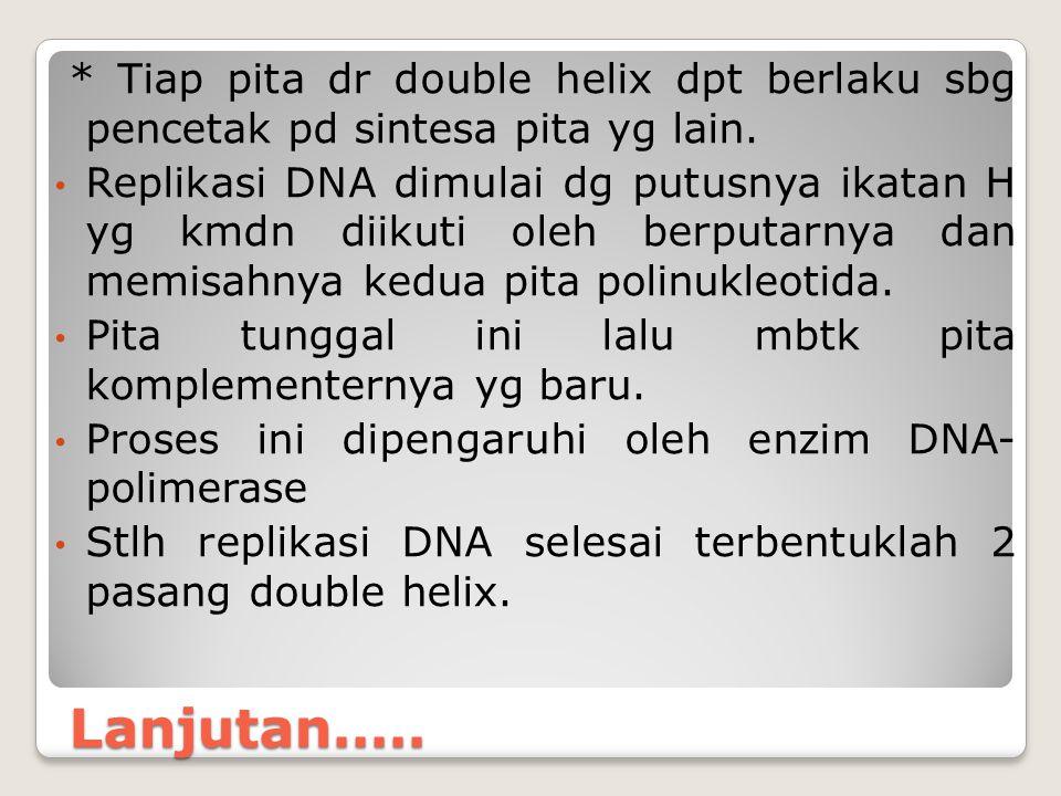 * Tiap pita dr double helix dpt berlaku sbg pencetak pd sintesa pita yg lain.