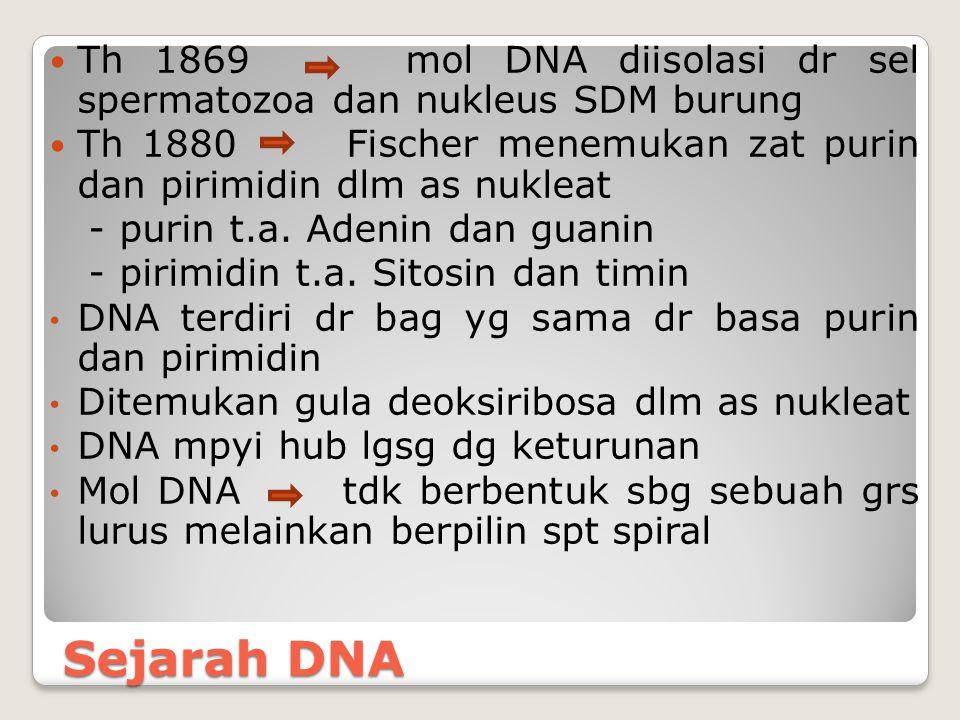 Th 1869 mol DNA diisolasi dr sel spermatozoa dan nukleus SDM burung