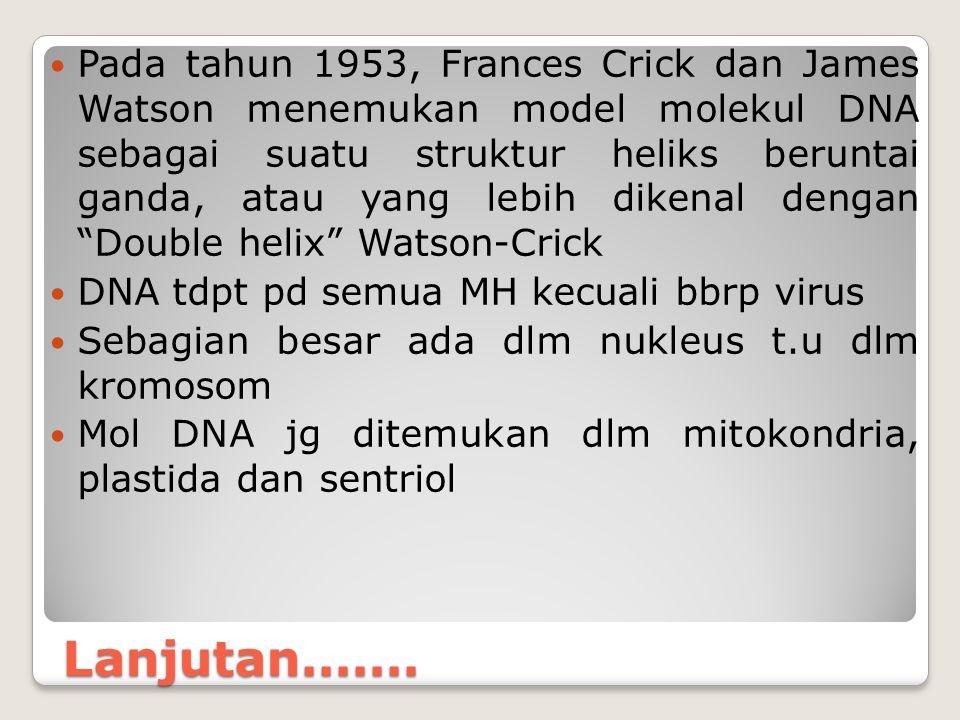 Pada tahun 1953, Frances Crick dan James Watson menemukan model molekul DNA sebagai suatu struktur heliks beruntai ganda, atau yang lebih dikenal dengan Double helix Watson-Crick