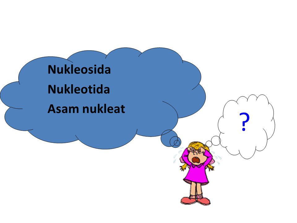 Nukleosida Nukleotida Asam nukleat