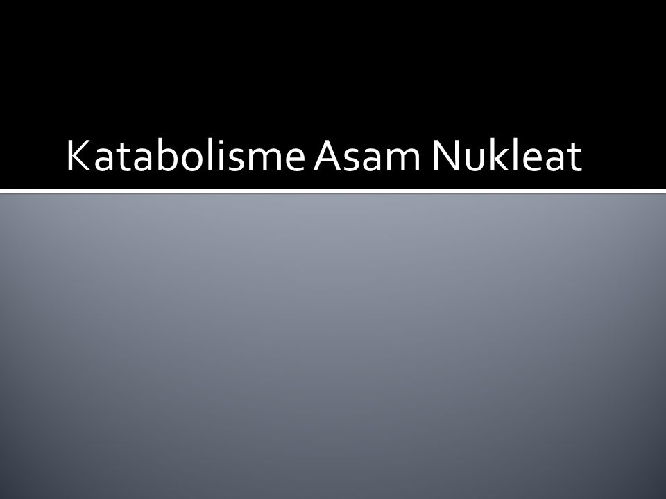 Katabolisme Asam Nukleat