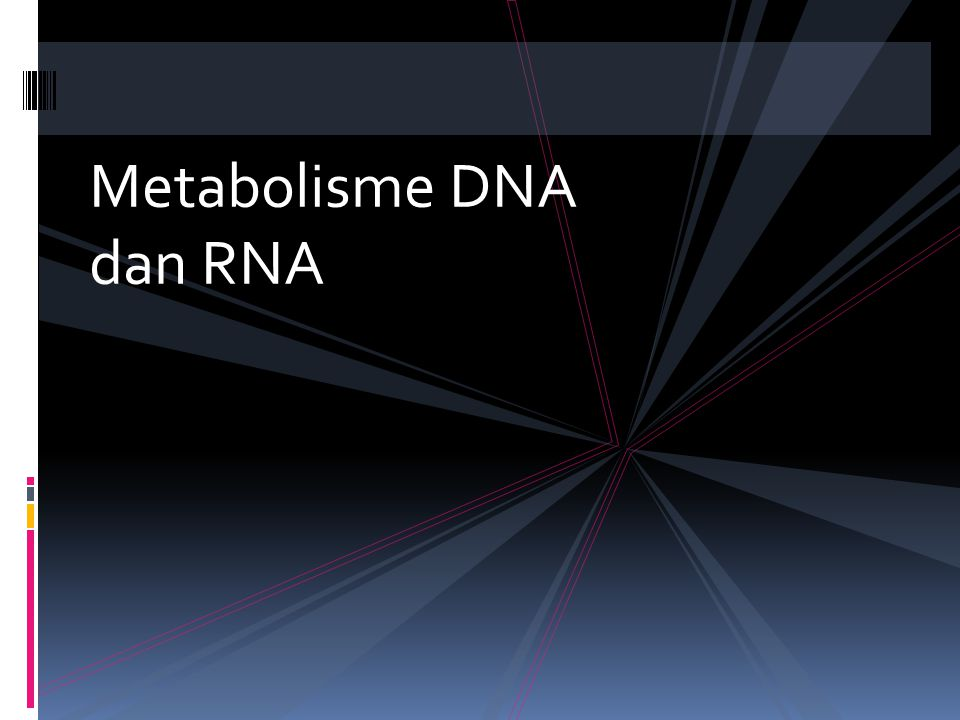 Metabolisme DNA dan RNA