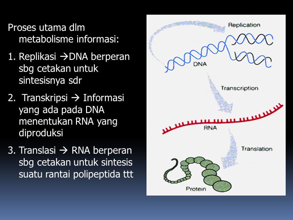 Proses utama dlm metabolisme informasi: