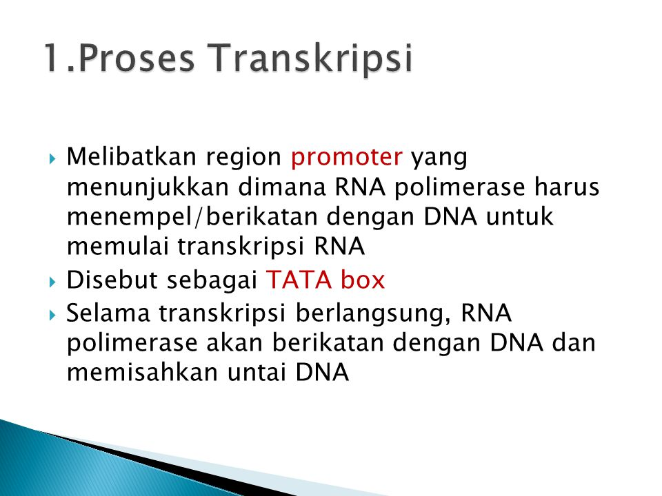 1.Proses Transkripsi