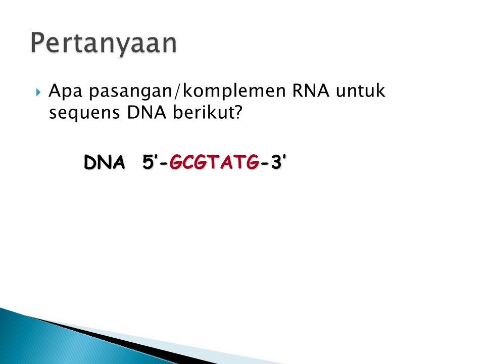 Pertanyaan Apa pasangan/komplemen RNA untuk sequens DNA berikut