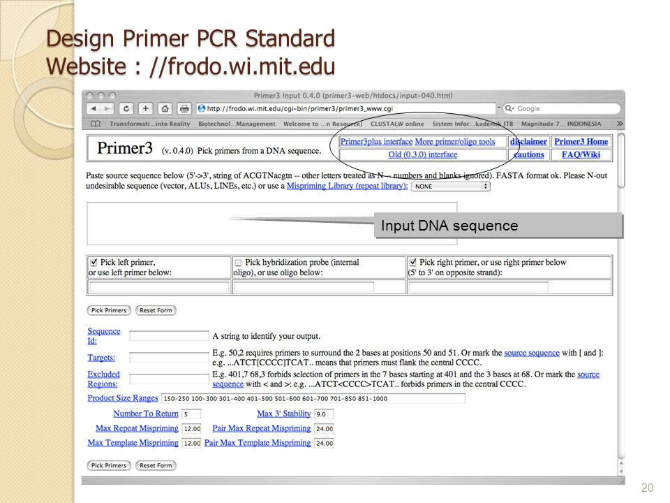 Design Primer PCR Standard Website : //frodo.wi.mit.edu