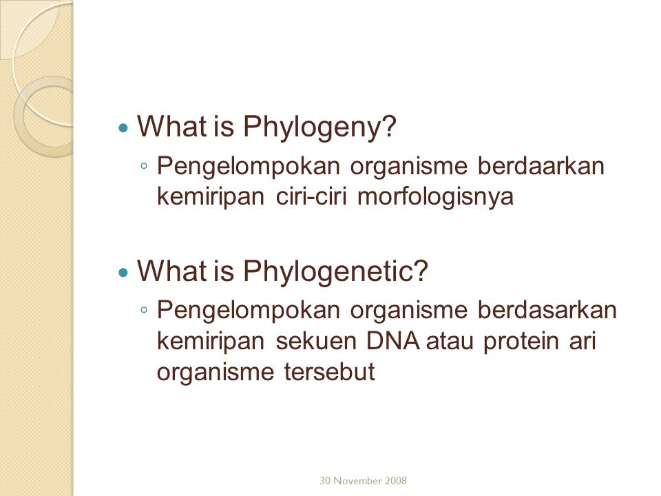 What is Phylogeny What is Phylogenetic