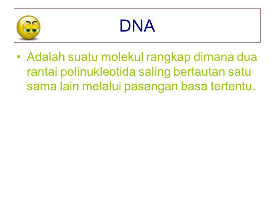DNA Adalah suatu molekul rangkap dimana dua rantai polinukleotida saling bertautan satu sama lain melalui pasangan basa tertentu.