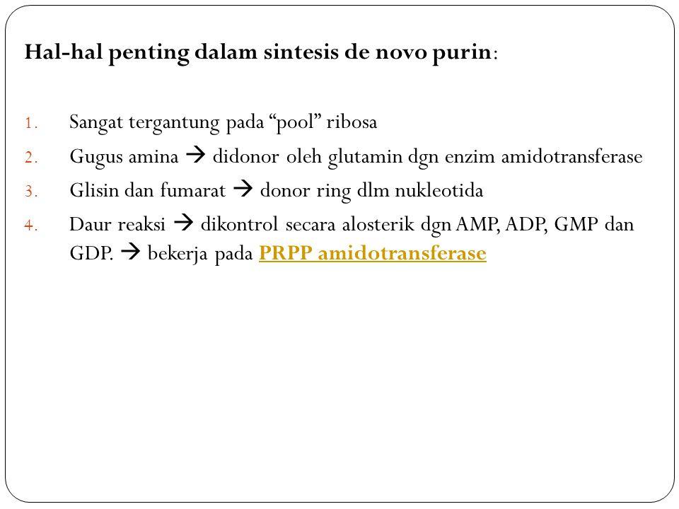Hal-hal penting dalam sintesis de novo purin: