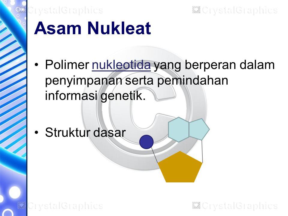 Asam Nukleat Polimer nukleotida yang berperan dalam penyimpanan serta pemindahan informasi genetik.