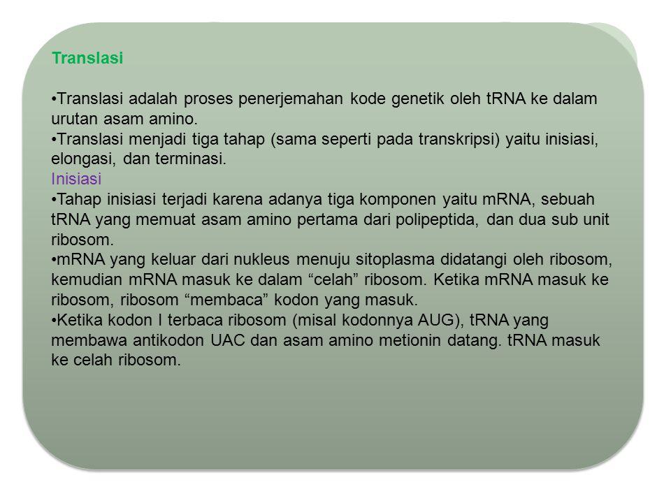 Translasi Translasi adalah proses penerjemahan kode genetik oleh tRNA ke dalam urutan asam amino.
