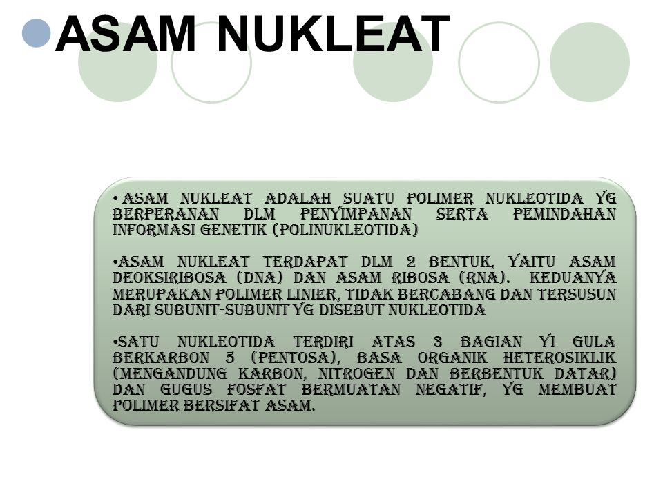 ASAM NUKLEAT Asam Nukleat adalah suatu polimer nukleotida yg berperanan dlm penyimpanan serta pemindahan informasi genetik (polinukleotida)