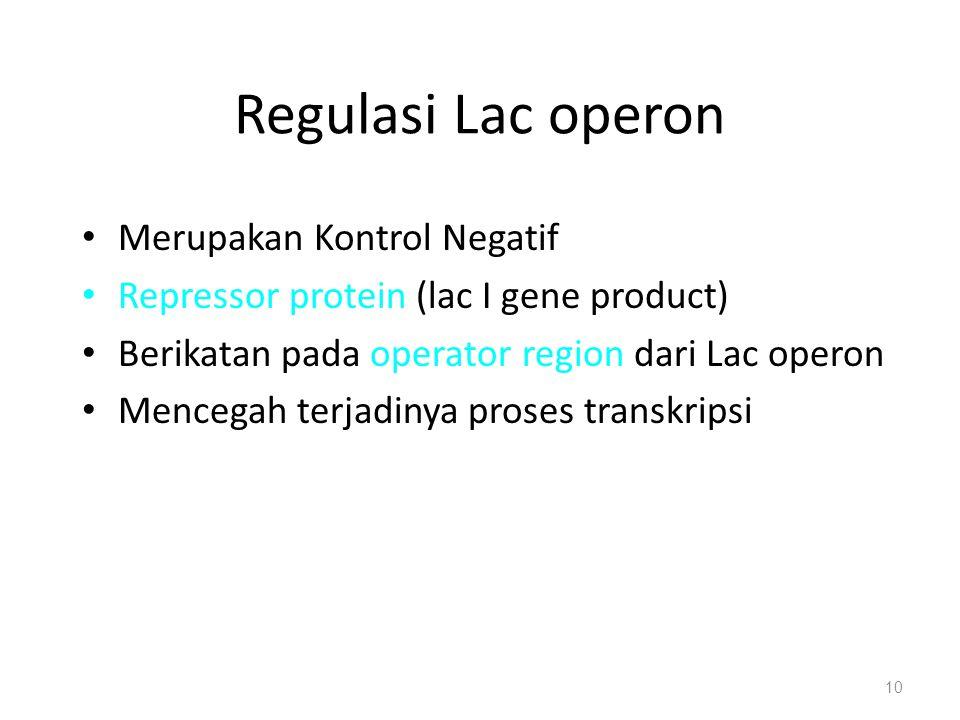 Regulasi Lac operon Merupakan Kontrol Negatif